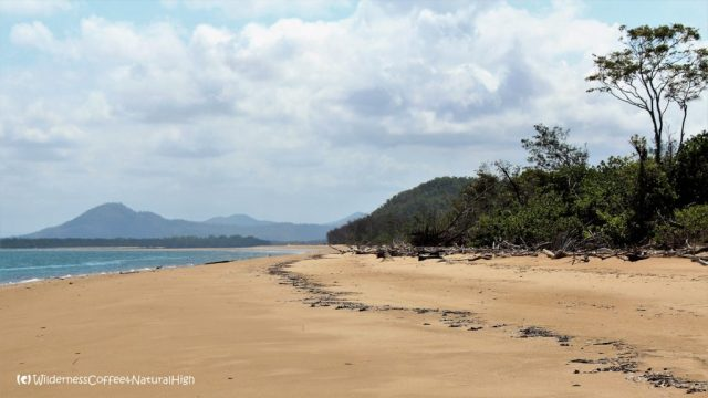 Mulligan Bay, Hinchinbrook Island, Thorsborne trail, Queensland, Australia