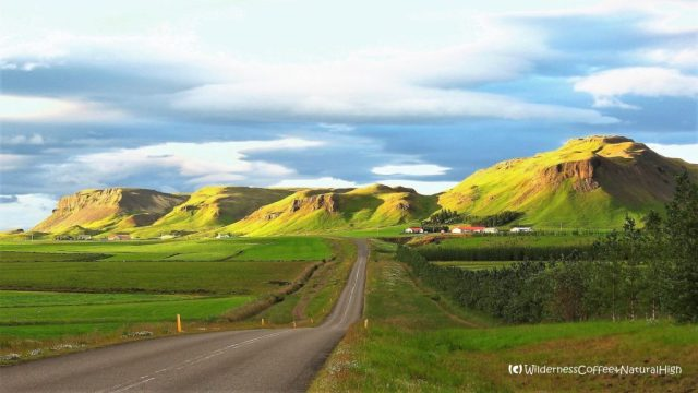 Road tripping, south coast, Suðurland, Iceland