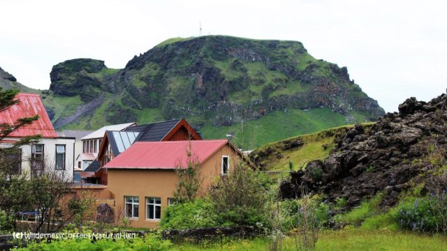 Houses on the edge of the lava flow, Heimaey, Vestmannaeyjar, Iceland