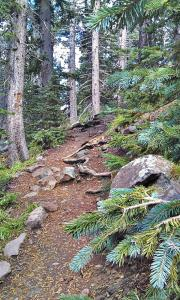 Humprey's Peak Trail