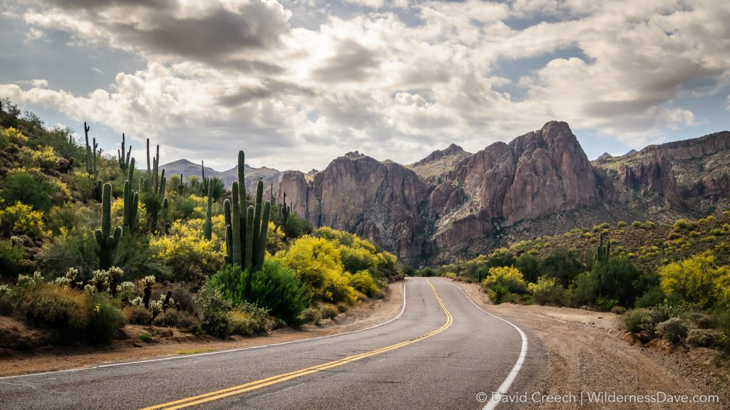 Bush Highway into Superstitions