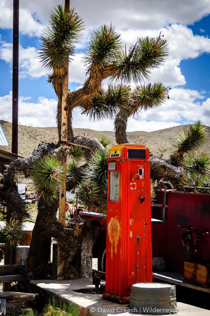 Old gas station pump and yucca at Gold Point