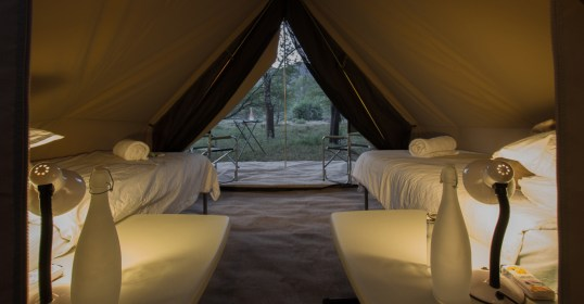 Safari Tents (8)