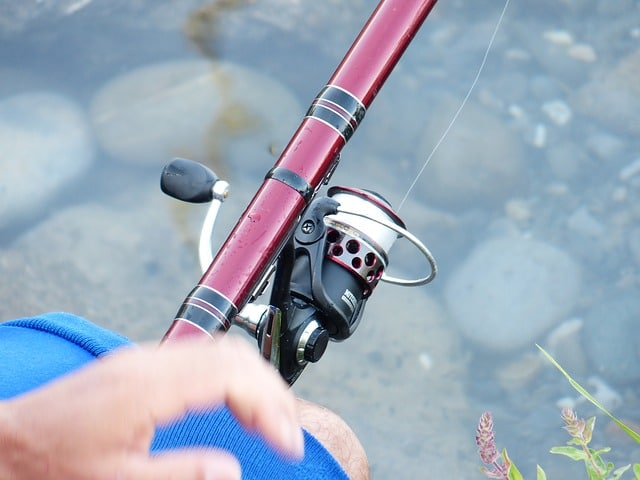 a spinning reel installed on a rod