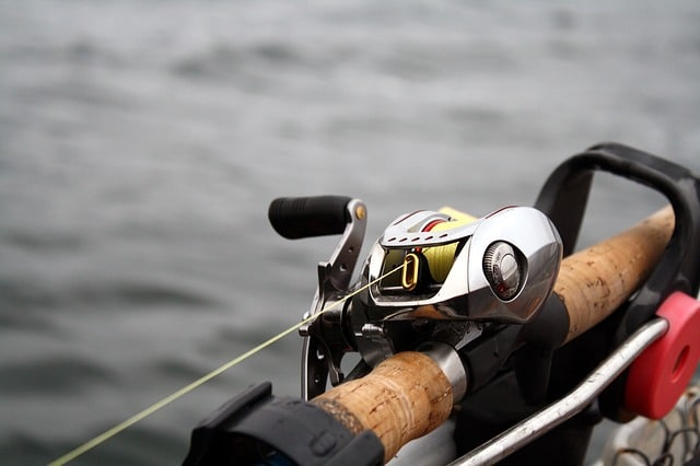 baitcasting reel installed on fishing rod