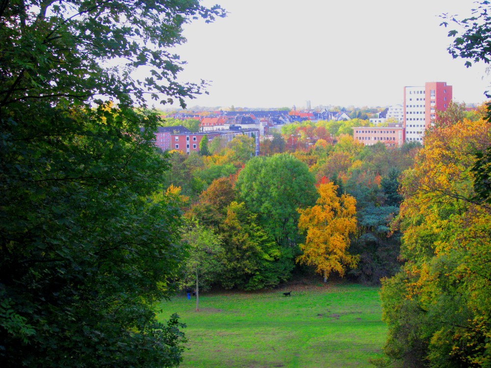 Fall Colors in Germany (6/6)