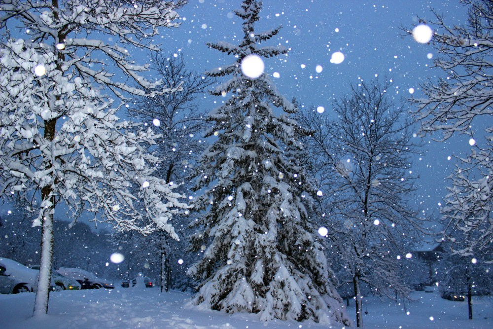 Minnesota Snow Fall December 2012 (4/6)