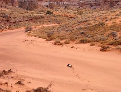 A person collapsed in a sandy wash