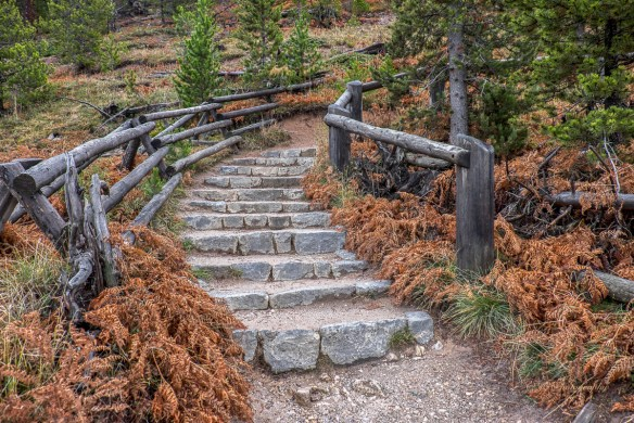 stairs up the trail