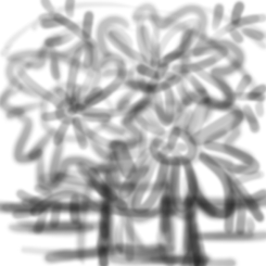 20170308-02-CC Cut Flowers