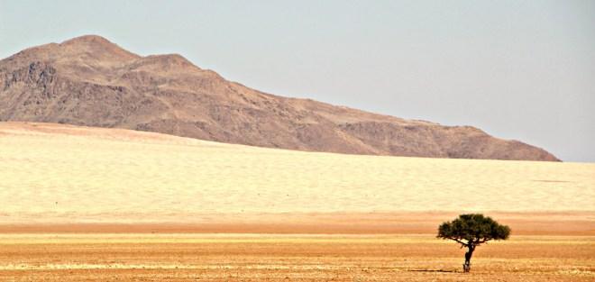 Wüste Namib, Namibrand