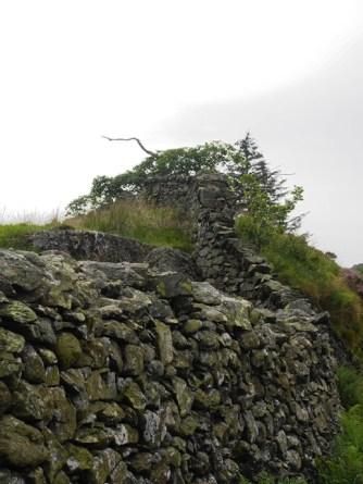 Steinwall / Stone wall