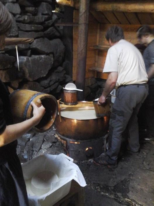 making goat cheese!