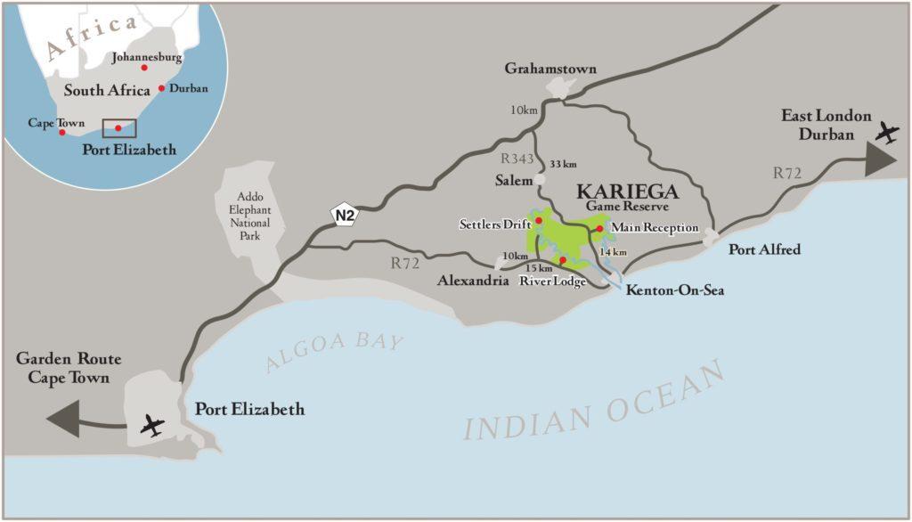 kariega-game-reserve-safari