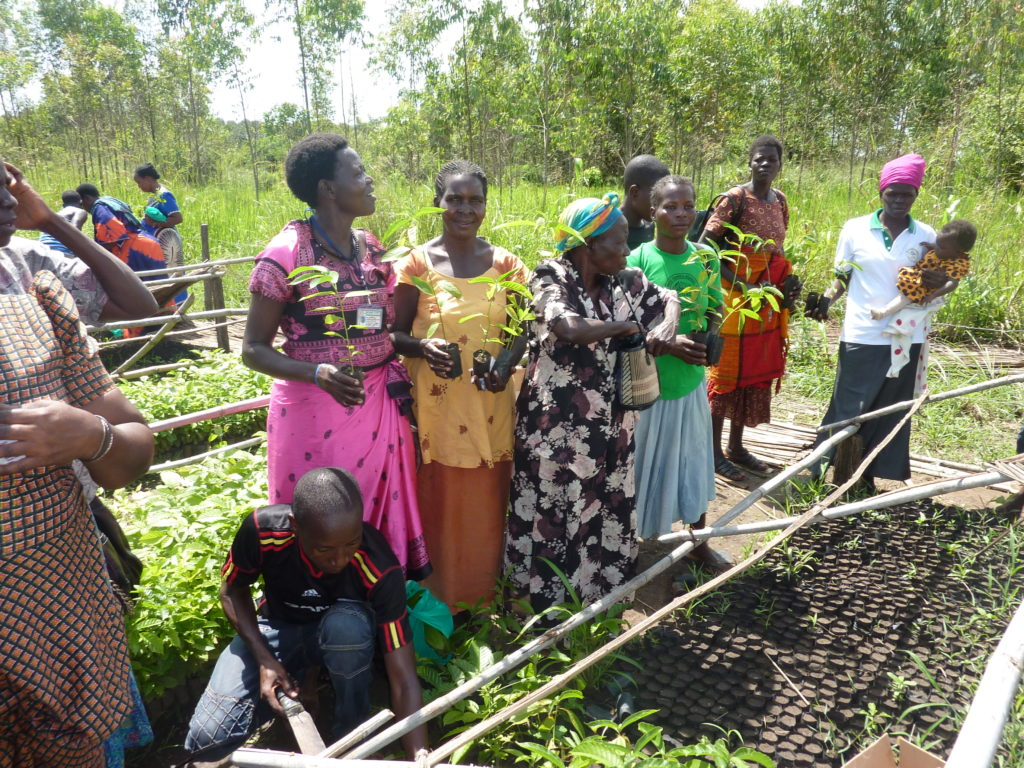 WildFF's Native Seeds Project in Gulu, Uganda