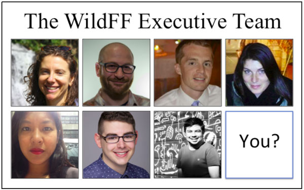 The WildFF Executive Team