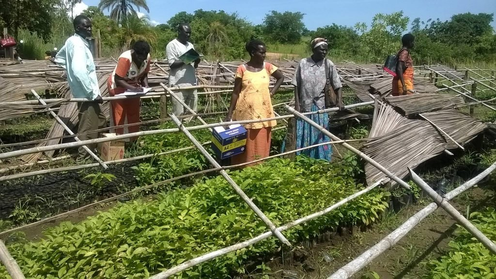 Women monitoring progress in the nursery