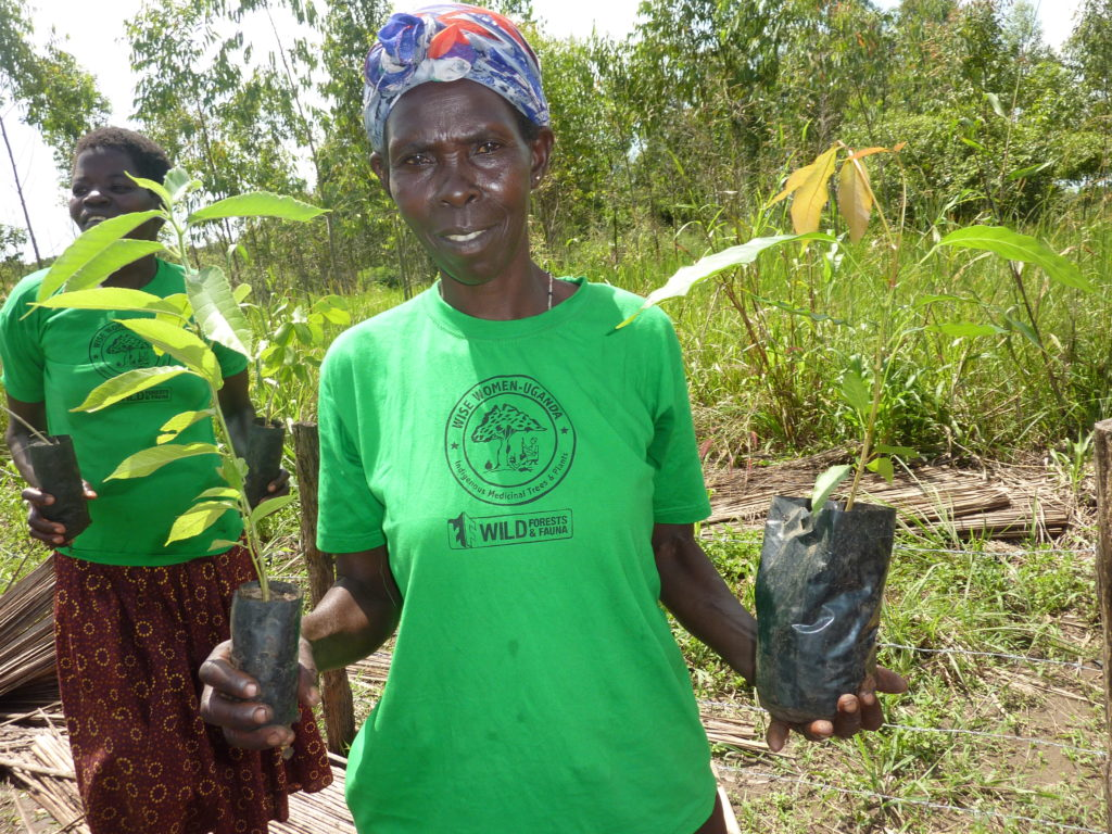 Wise Woman holding two seedlings