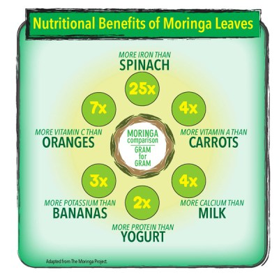 Nutritional Benefits of Moringa Leaves