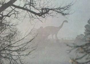 Dinosaur Hill fire