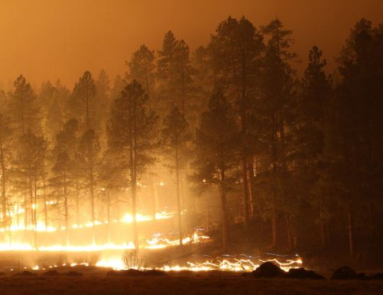 Wallow fire 6-7-2011
