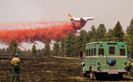 Poll: Most significant wildfire stories of 2011