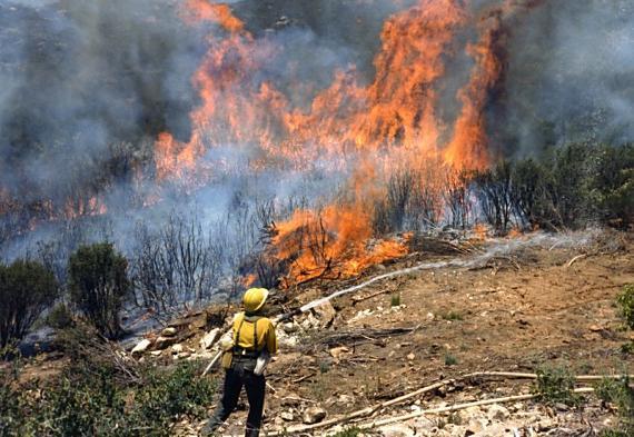 Prescribed fire near Pine Valley, California, 1987