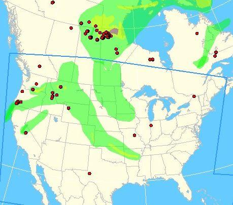 wildfire Smoke map, 11:37 a.m. MDT July 27, 2013