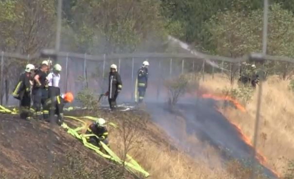 Firefighters along a fence