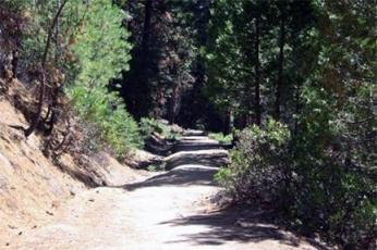 PT run trail