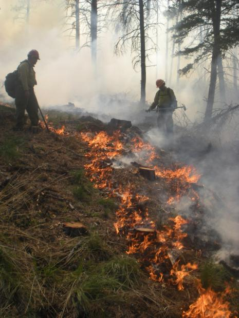 Prescribed fire on the Helena National Forest