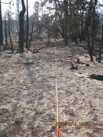 fire behavior plot