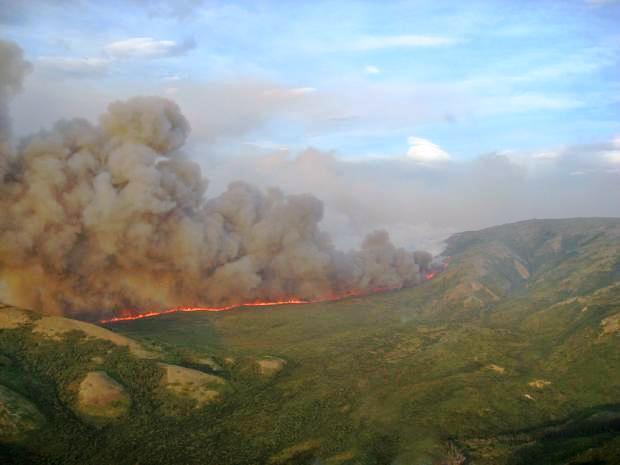 Rex Creek Fire