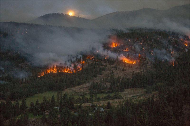Chelan Fires