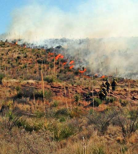 Panther Junction fire