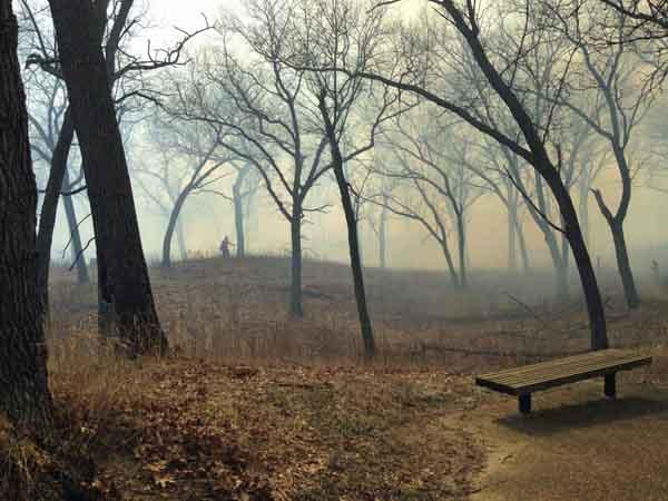 wildfire Indiana Dunes National Lakeshore