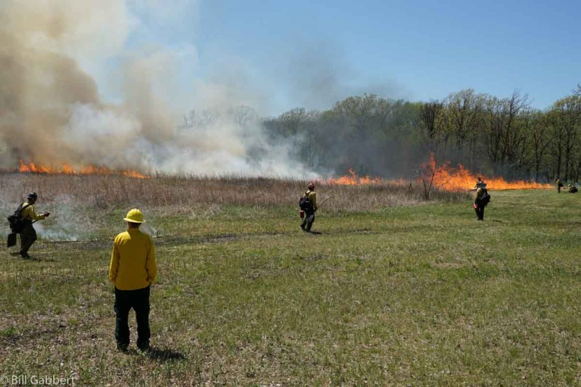 Homestead Rx fire