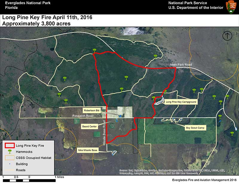 Long Pine Key Fire In Everglades National Park Wildfire Today