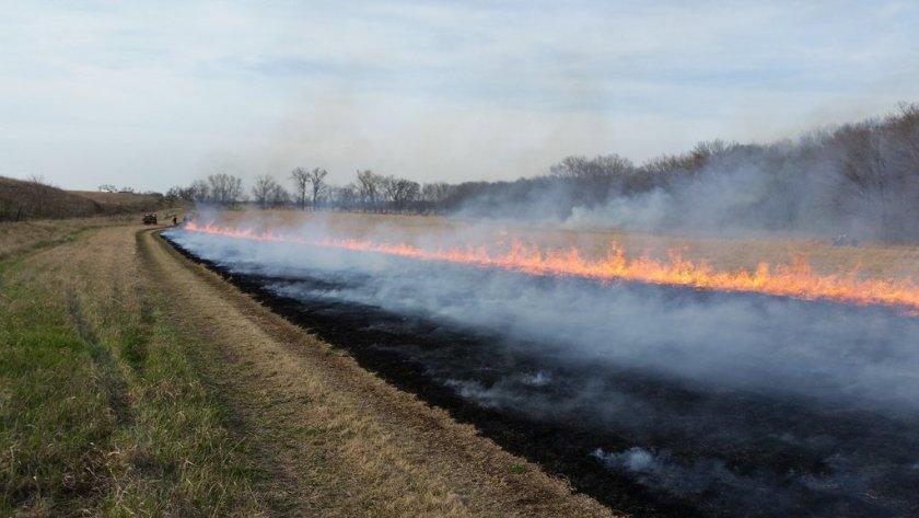 Tall Grass Prairie prescribed fire