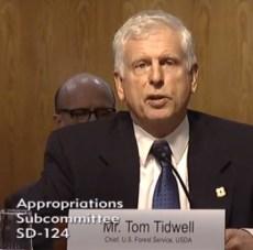 Tom Tidwell