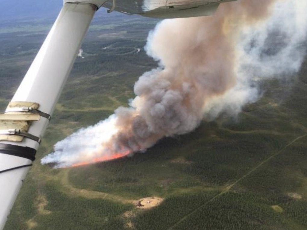 Tok River Fire