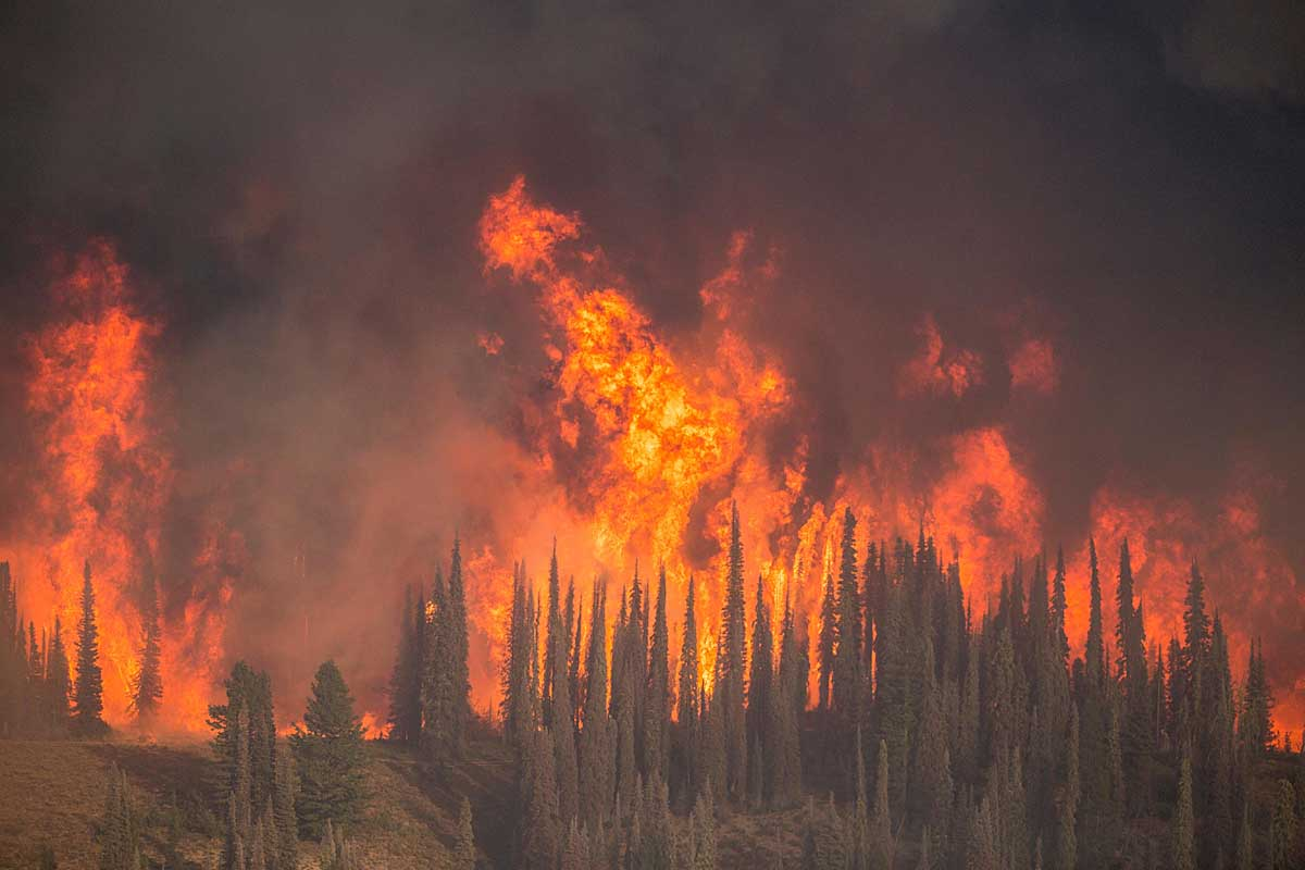 USFS Regional Fire Director describes the management of the Pioneer Fire