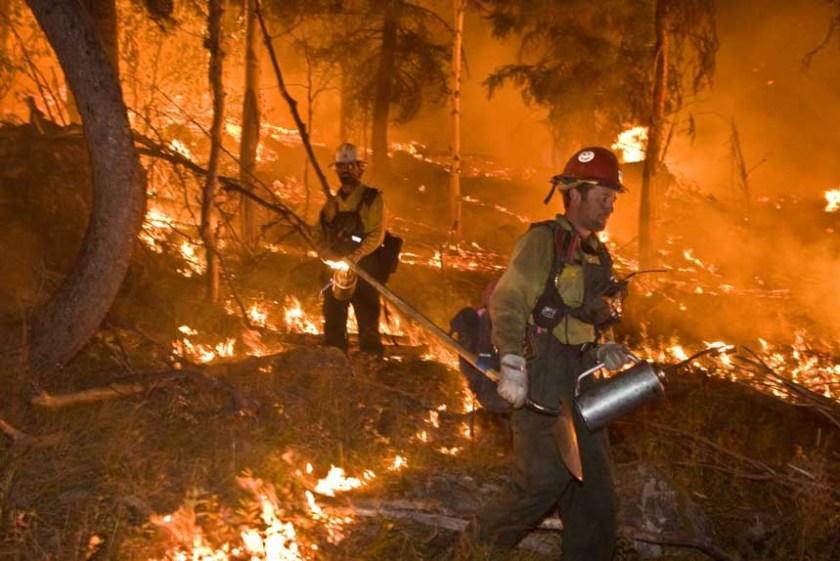 firefighters wildland fire wildfire