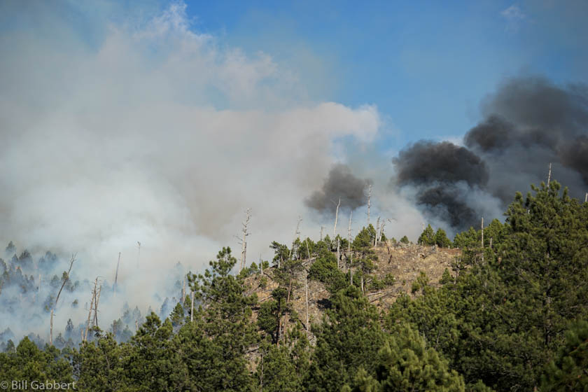 Whitetail Fire in South Dakota burns toward Mount Coolidge