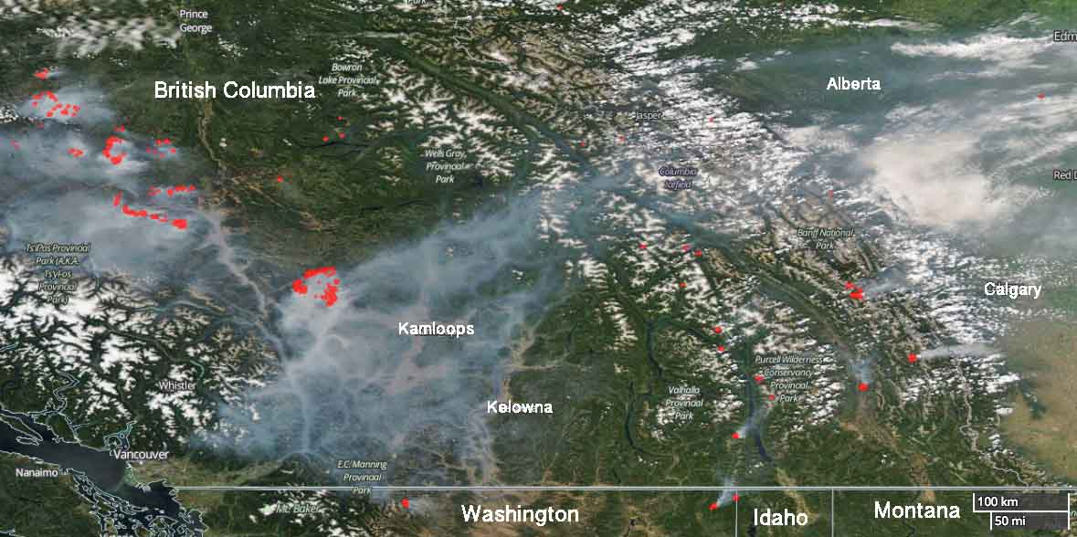 Elephant Hill Fire in British Columbia grows to 194,000 acres
