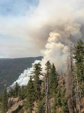 South Fork Fire