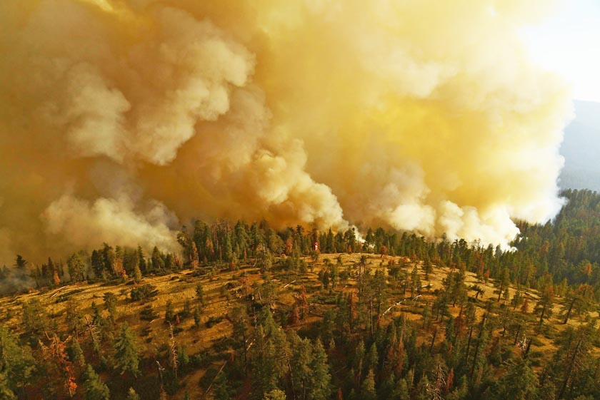 Firefighters battling South Fork Fire east of Wawona, California