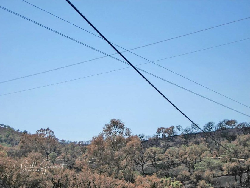 portugal power lines wildfire