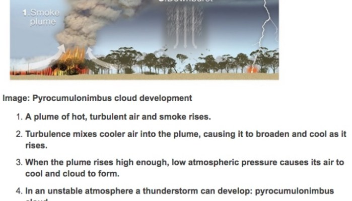 Massive pyrocumulus cloud over Australian bushfire produces