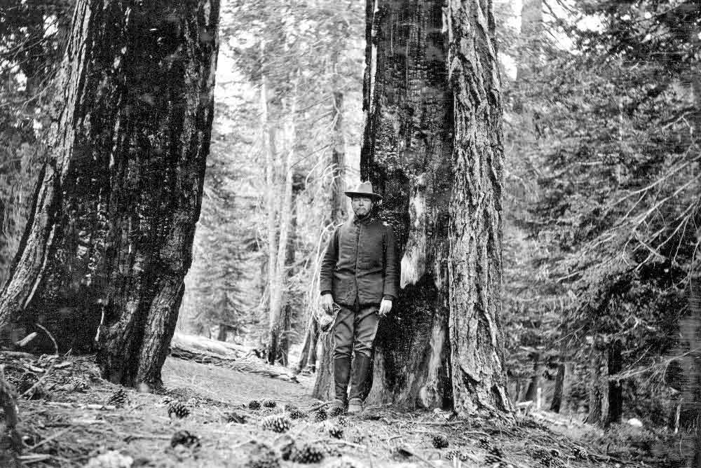 TBT: Fire effects in Yosemite NP, 1897